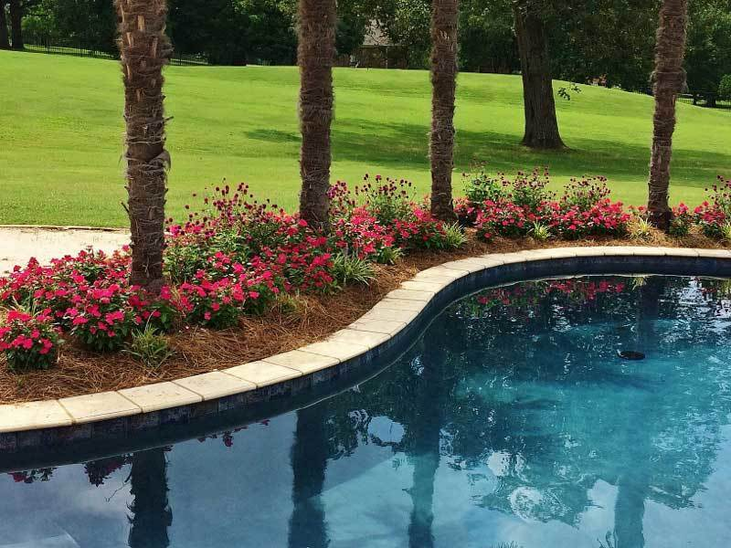 Pool Landscape Architecture