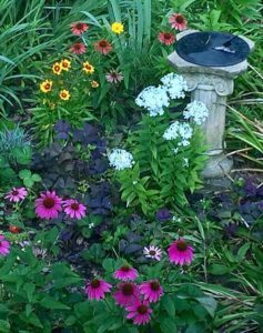 Perennial flower bed by The Plant Lady